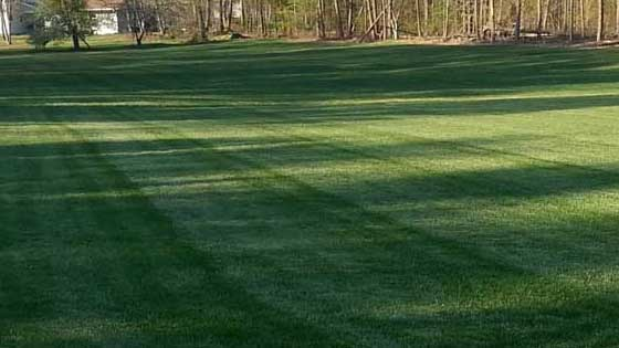 turf-services-Reidsville-NC